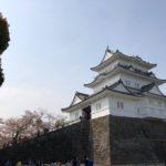 日本一周・Day 3 〝小田原城の桜がまだ綺麗だった〟【小田原城/桜/味噌ラーメン】